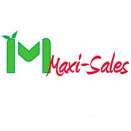 Logo Maxi-Sales
