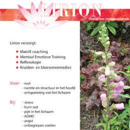 Brochure Lirion